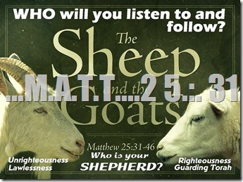 GODSBLOG.ORG SHEEP AND GOATS MATT 24